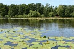 Тавские озёра