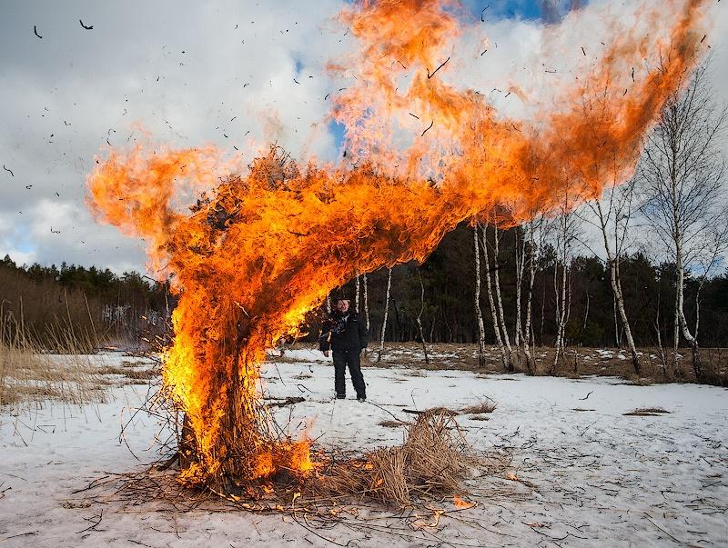 Отзыв фотографу за свадебную фотосессию зимой
