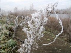 """Соревнования по спиннигу """"Матросовка 2011"""", 12.11.2011"""