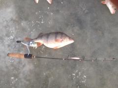 зима рыбачий