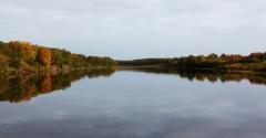 Осення Кица по приливу
