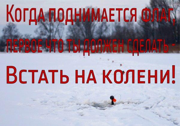 Жерлицы_-01.jpg